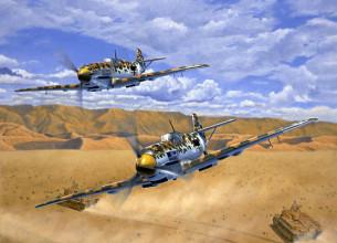 Messerschmitt Aces, ME 109